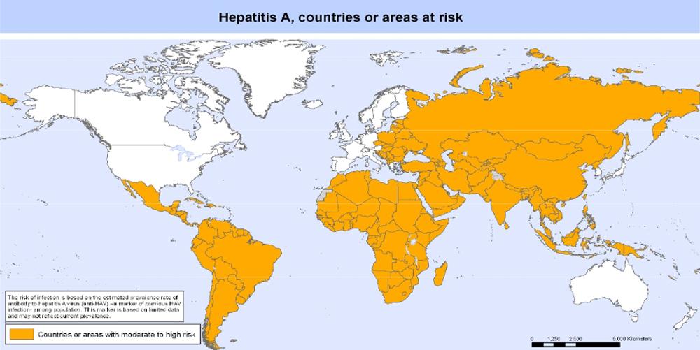 ministerio salud hepatitis enfermedad vacuna internacional