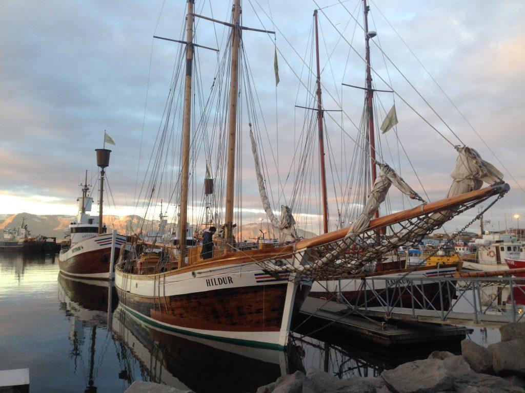 husavik ballenas barco boattrip